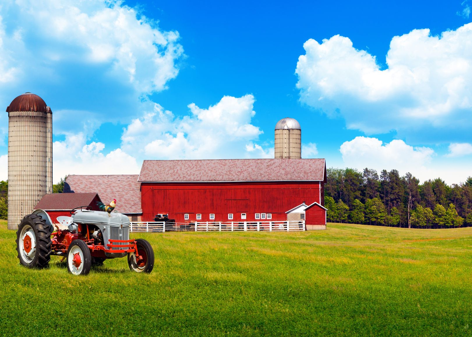 Baton Rouge Farm & Ranch Insurance
